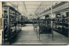 libreta de postales del museo nacional de ciencias naturales, madrid